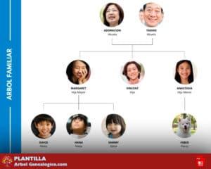 Árbol genealógico 3 generaciones PDF